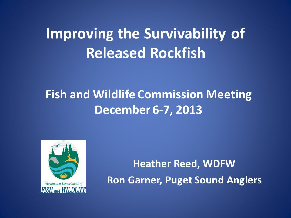 Improving the Survivability of Released Rockfish Heather