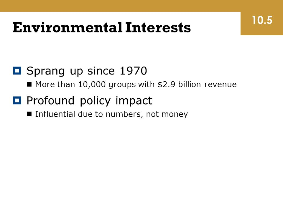 Environmental Interests  Sprang up since 1970 More than 10,000 groups with $2.9 billion revenue  Profound policy impact Influential due to numbers, not money 10.5