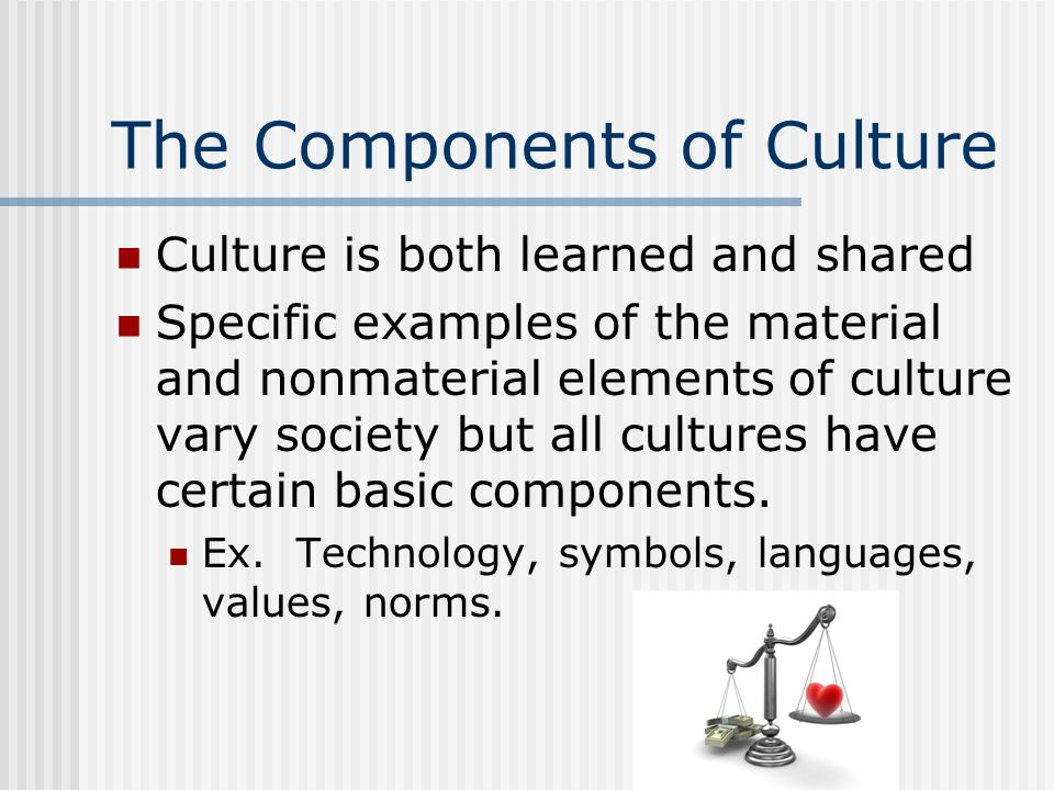 Cultural Diversity Chapter 2 Section 1 The Meaning Of Culture Ppt