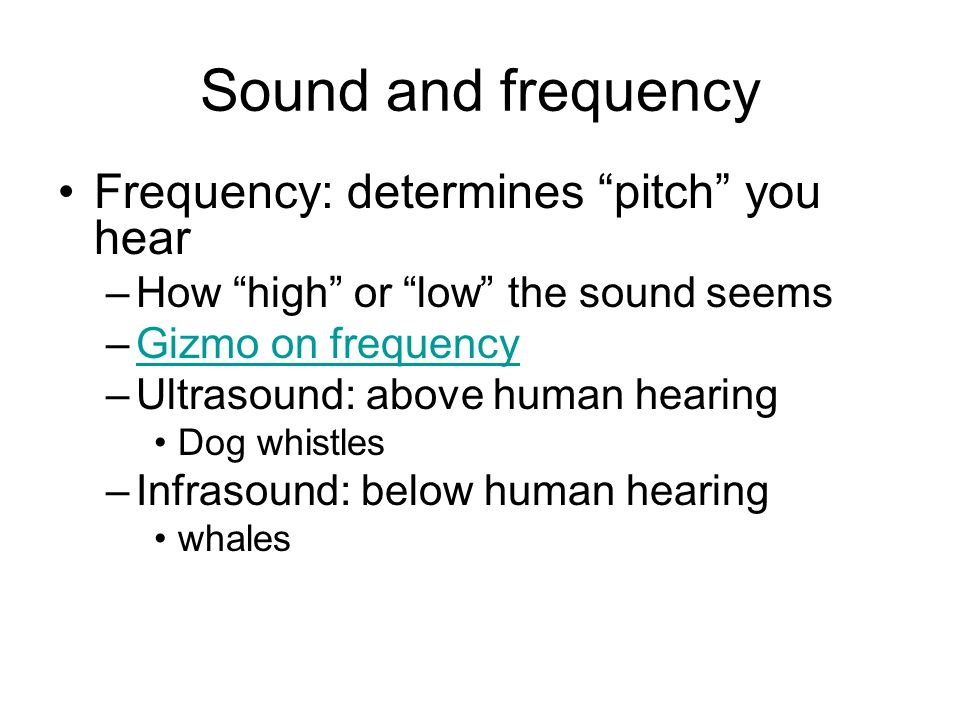 Sound and frequency Frequency: determines pitch you hear –How high or low the sound seems –Gizmo on frequencyGizmo on frequency –Ultrasound: above human hearing Dog whistles –Infrasound: below human hearing whales