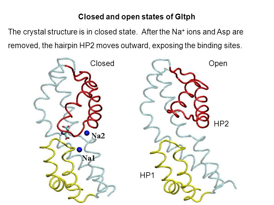 Week 4 MD simulations of ion channels and transporters Lecture 7