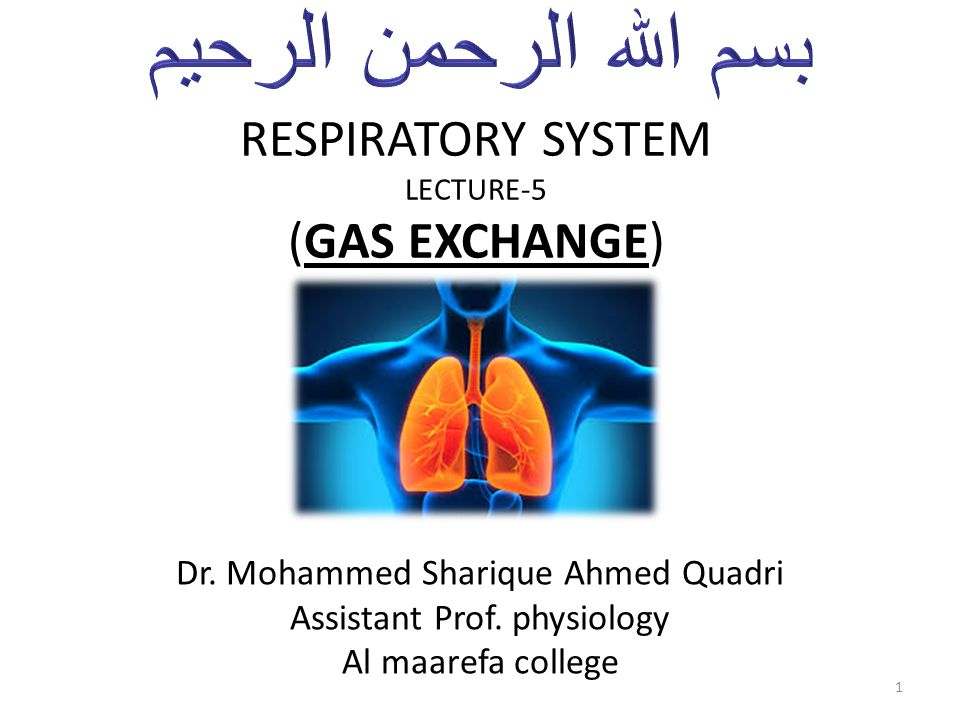 RESPIRATORY SYSTEM LECTURE-5 (GAS EXCHANGE) Dr. Mohammed Sharique ...