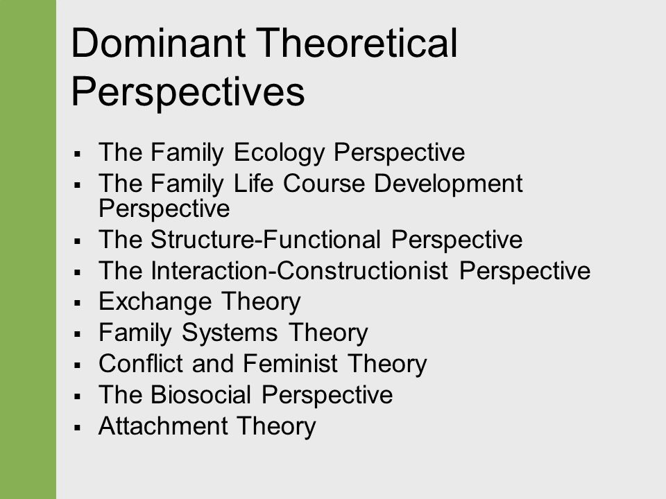 family perspective theory