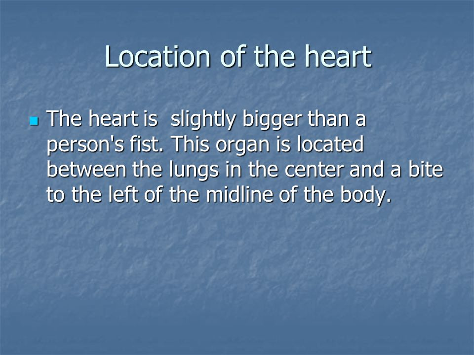 Circulation And The Heart Topical Outline I Location Of The Heart I