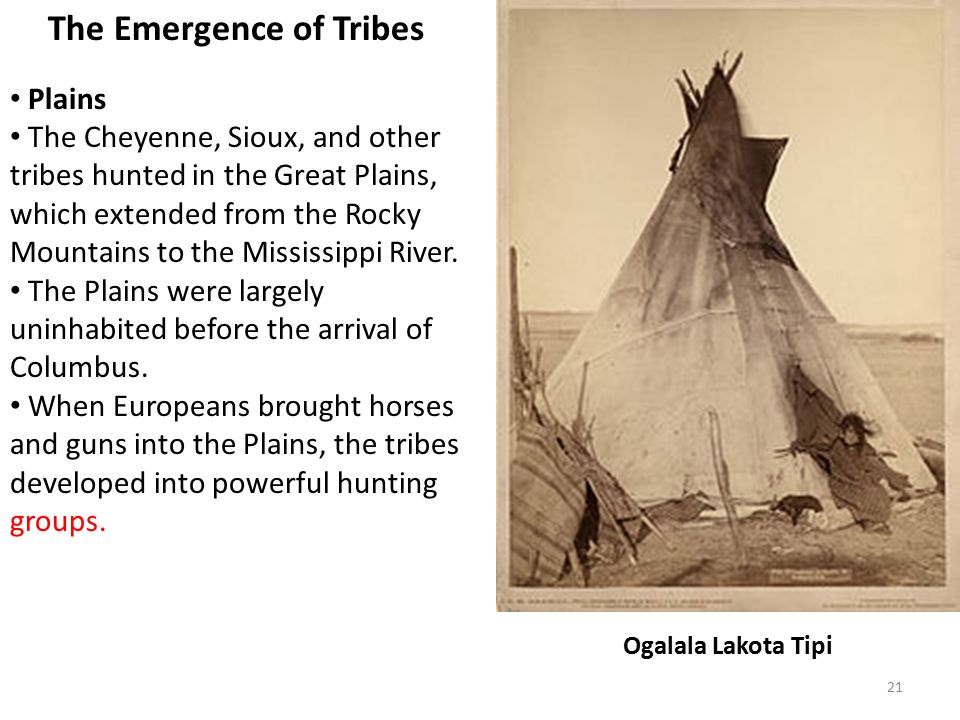 21 The Emergence of Tribes Plains The Cheyenne, Sioux, and other tribes hunted in the Great Plains, which extended from the Rocky Mountains to the Mississippi River.