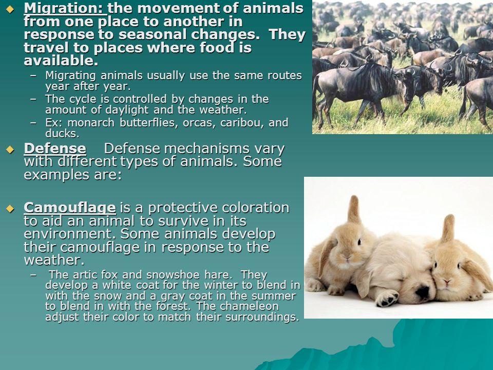 Standards 4 & 5. Standard 4  all organisms respond to their.