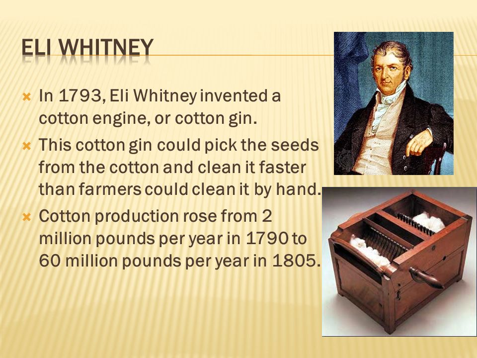  In 1793, Eli Whitney invented a cotton engine, or cotton gin.