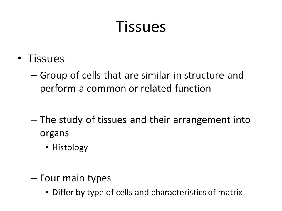 Ch. 4 Tissues. Objectives Define tissue Describe the four main ...
