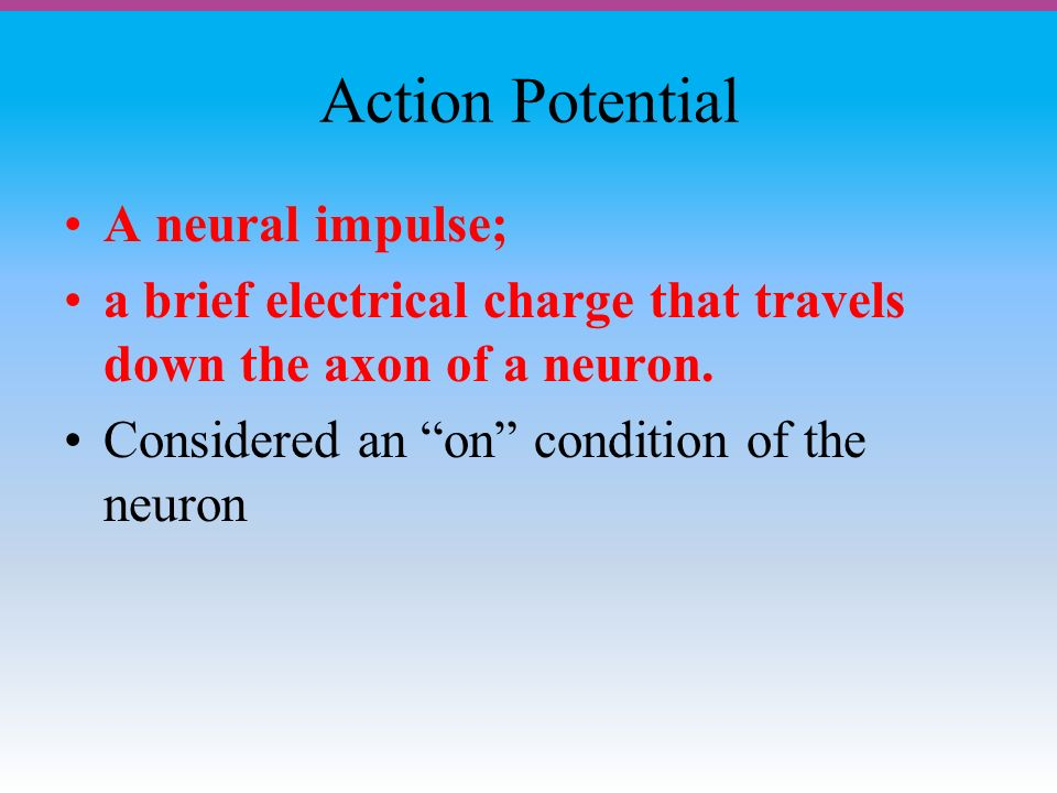 Action Potential A neural impulse; a brief electrical charge that travels down the axon of a neuron.