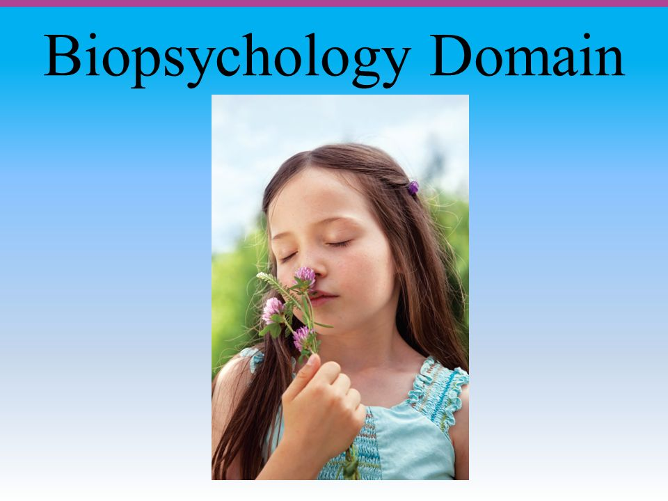 Biopsychology Domain