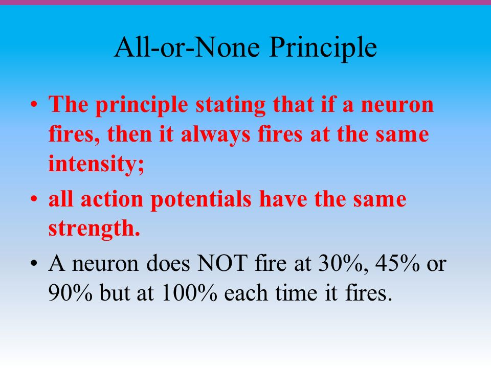 All-or-None Principle The principle stating that if a neuron fires, then it always fires at the same intensity; all action potentials have the same strength.