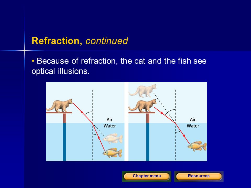 ResourcesChapter menu Refraction, continued Because of refraction, the cat and the fish see optical illusions.