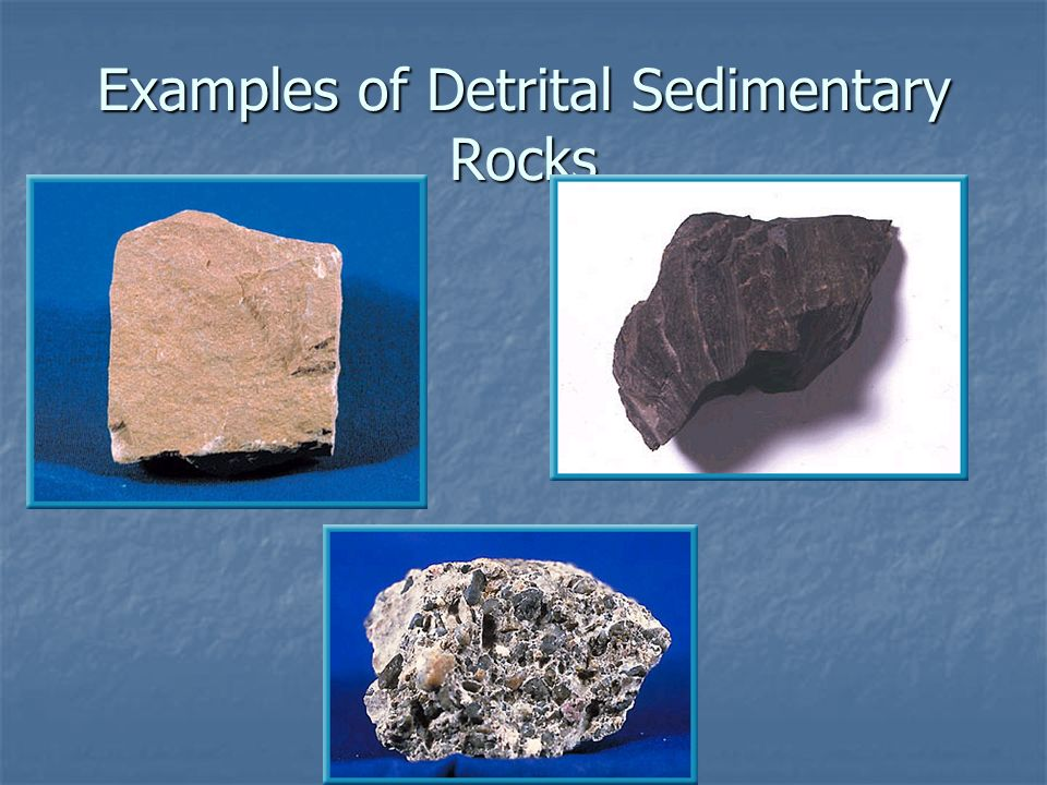 What are the differences between clastic, organic, and chemical.
