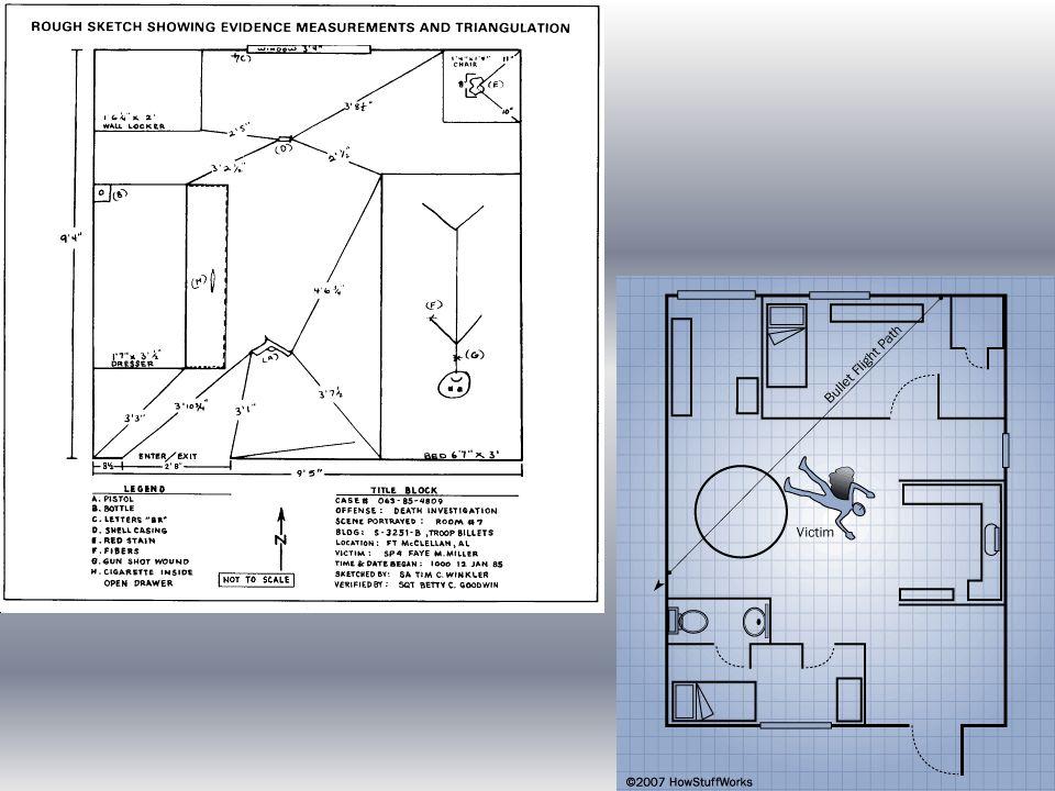 Three Components Of A Crime Scene Diagram Diy Wiring Diagrams