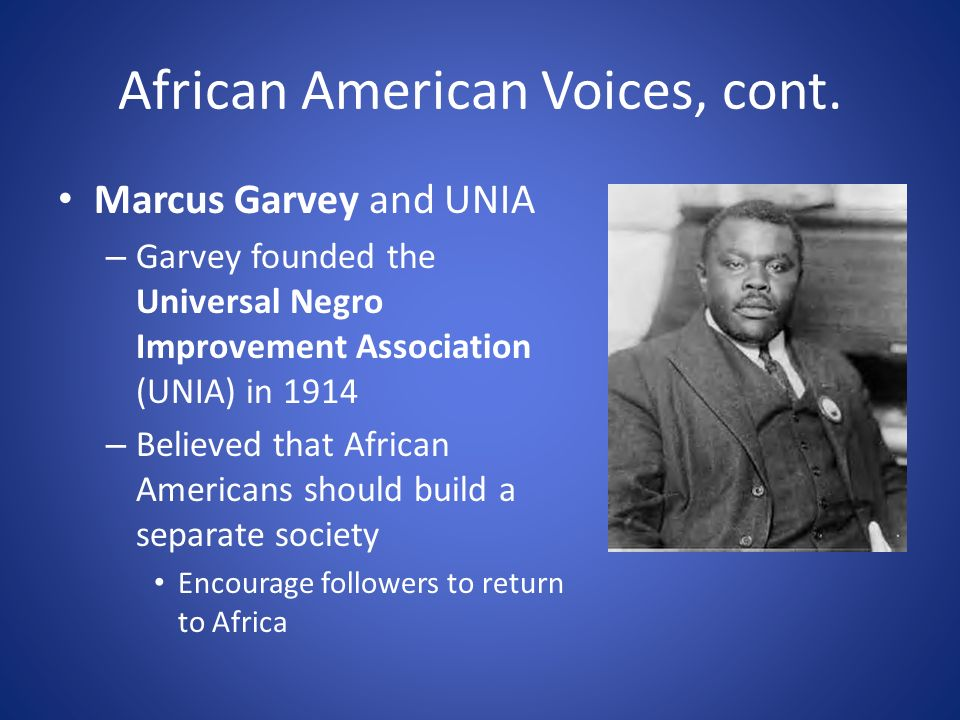African American Voices, cont.