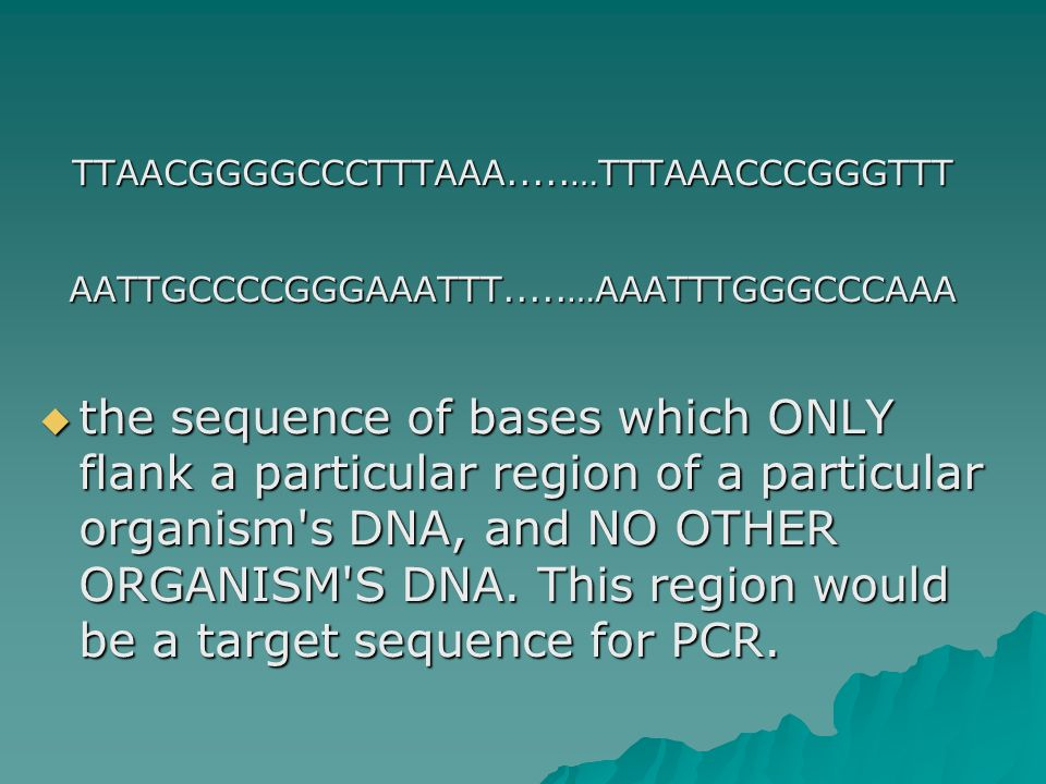 TTAACGGGGCCCTTTAAA.....…TTTAAACCCGGGTTTAATTGCCCCGGGAAATTT.....…AAATTTGGGCCCAAA  the sequence of bases which ONLY flank a particular region of a particular organism s DNA, and NO OTHER ORGANISM S DNA.