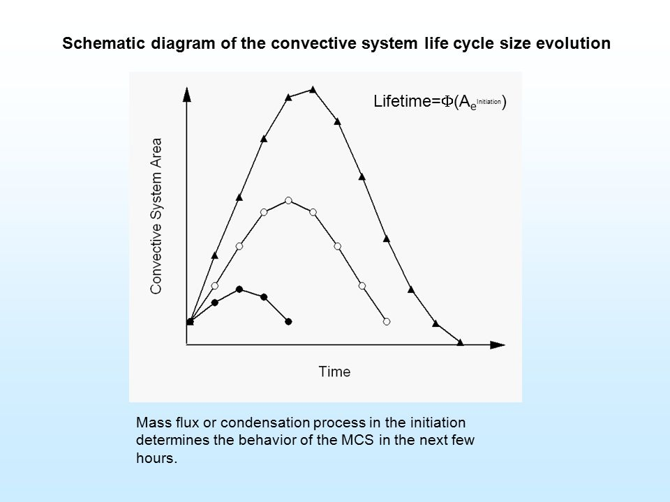 Schematic diagram of the convective system life cycle size ... on
