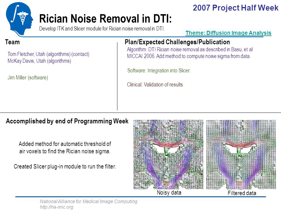 National Alliance for Medical Image Computing http://na-mic.org Rician Noise Removal in DTI: Develop ITK and Slicer module for Rician noise removal in DTI.
