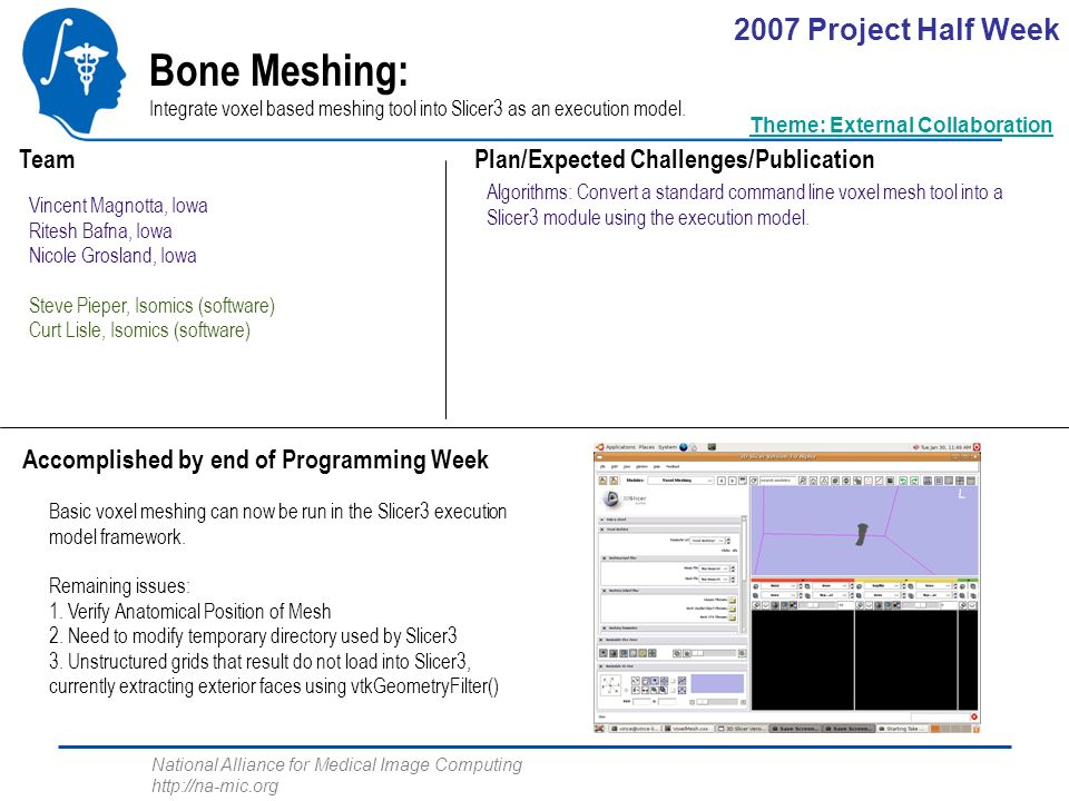 National Alliance for Medical Image Computing http://na-mic.org Bone Meshing: Integrate voxel based meshing tool into Slicer3 as an execution model.