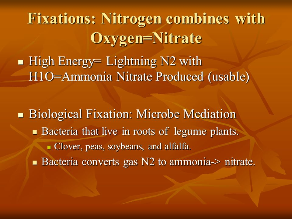 Fixations: Nitrogen combines with Oxygen=Nitrate High Energy= Lightning N2 with H1O=Ammonia Nitrate Produced (usable) High Energy= Lightning N2 with H1O=Ammonia Nitrate Produced (usable) Biological Fixation: Microbe Mediation Biological Fixation: Microbe Mediation Bacteria that live in roots of legume plants.