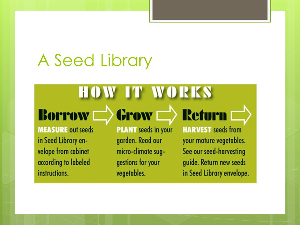 What Is A Seed Library Types Of Libraries What Was A Mobile