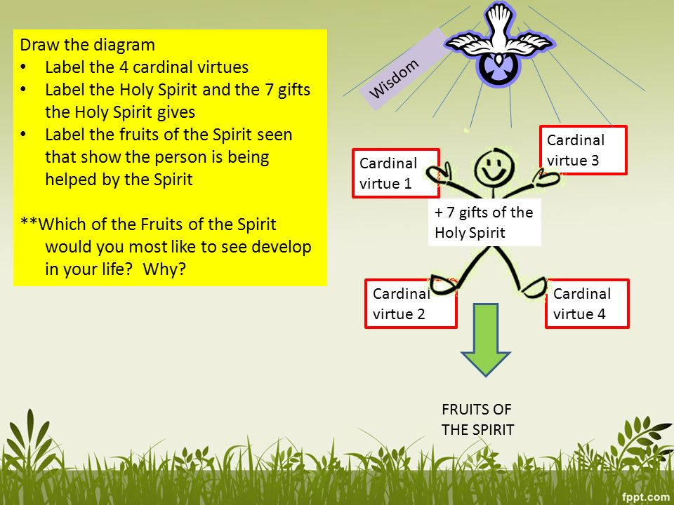 3 Draw The Diagram Label The 4 Cardinal Virtues Label The Holy Spirit And The 7 Gifts The Holy Spirit Gives Label The Fruits Of The Spirit Seen That Show