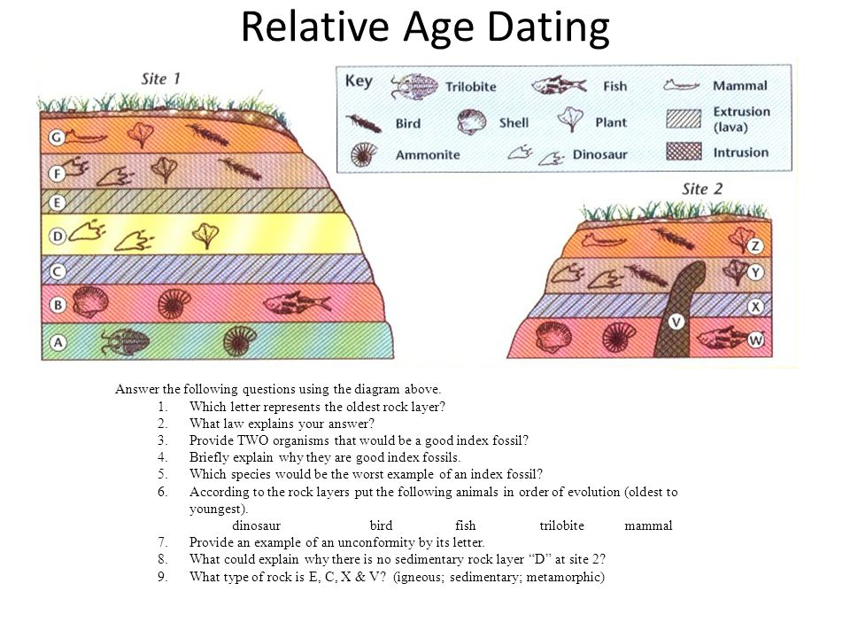 fossil age dating