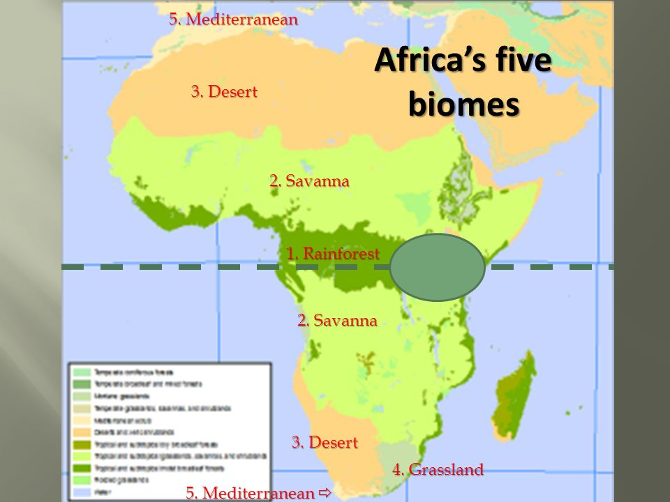 Temperature precipitation 3 desert 2 savanna 4 grassland 5 desert 2 savanna 4 grassland 5 mediterranean 5 gumiabroncs Images