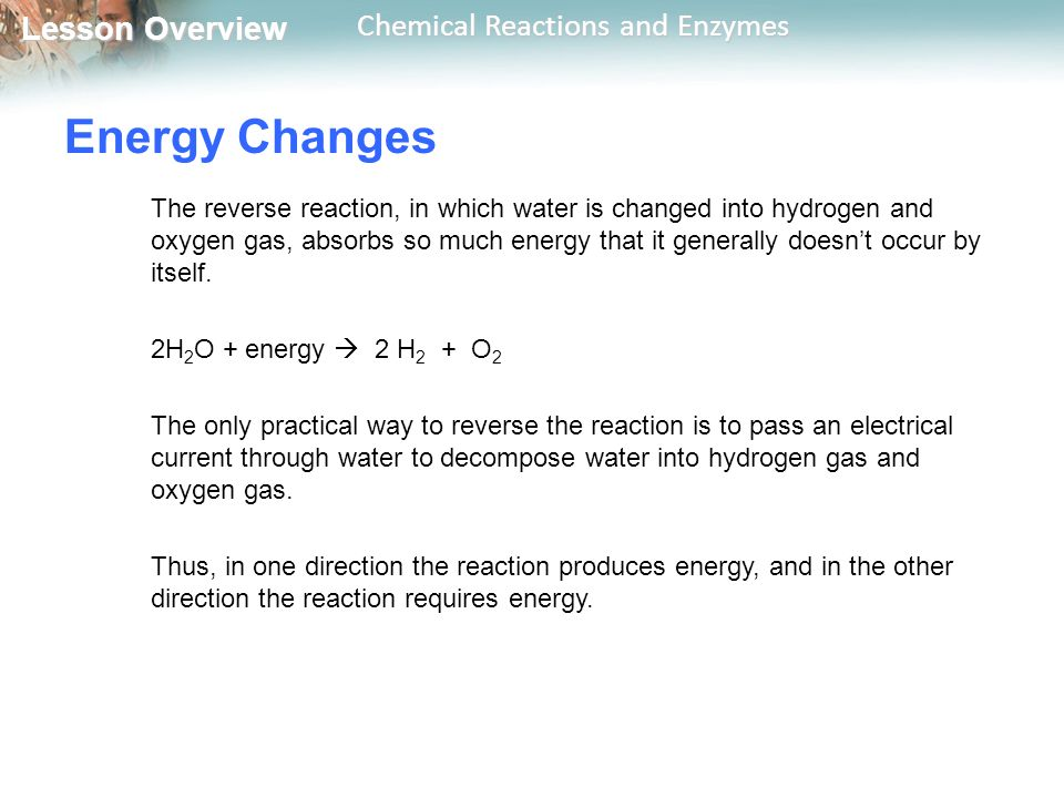 Lesson Overview Lesson Overview Chemical Reactions and Enzymes Energy Changes The reverse reaction, in which water is changed into hydrogen and oxygen gas, absorbs so much energy that it generally doesn't occur by itself.