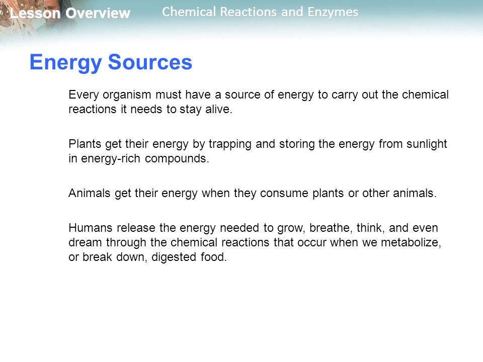 Lesson Overview Lesson Overview Chemical Reactions and Enzymes Energy Sources Every organism must have a source of energy to carry out the chemical reactions it needs to stay alive.
