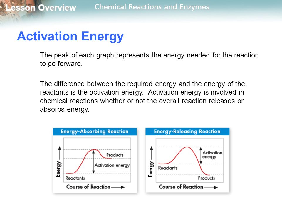 Lesson Overview Lesson Overview Chemical Reactions and Enzymes Activation Energy The peak of each graph represents the energy needed for the reaction to go forward.