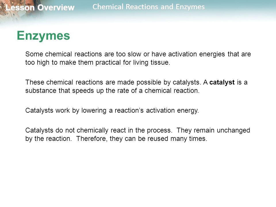 Lesson Overview Lesson Overview Chemical Reactions and Enzymes Enzymes Some chemical reactions are too slow or have activation energies that are too high to make them practical for living tissue.