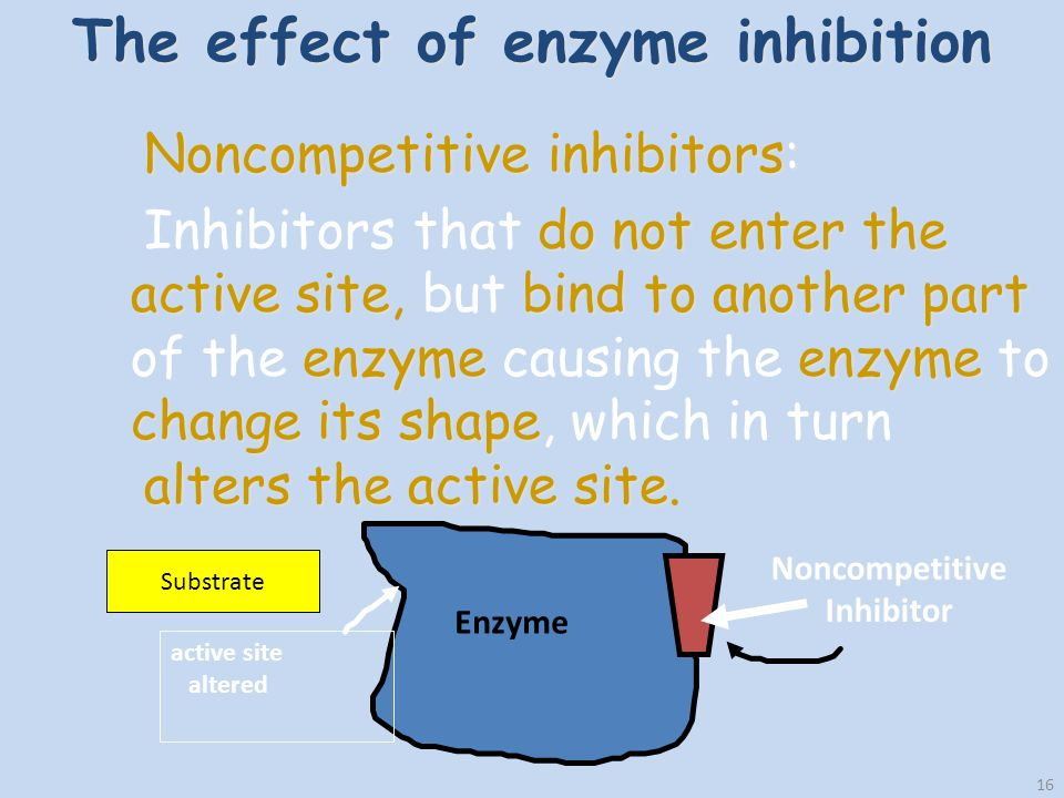 16 The effect of enzyme inhibition Noncompetitive inhibitors: do not enter the active sitebind to another part enzymeenzyme change its shape alters the active site Inhibitors that do not enter the active site, but bind to another part of the enzyme causing the enzyme to change its shape, which in turn alters the active site.