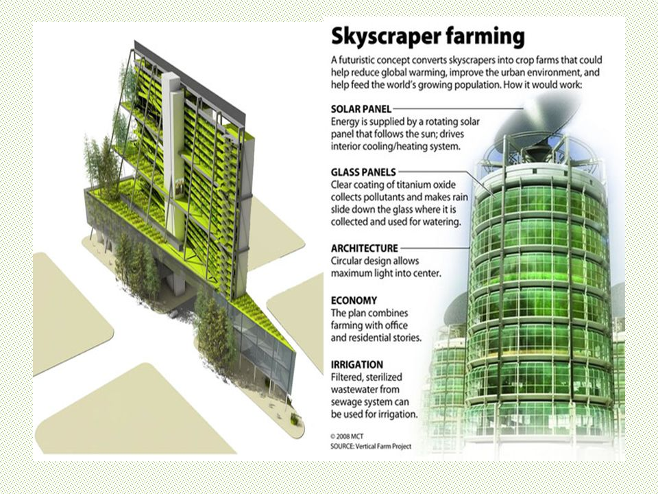 Green Cities of the Future What will our cities look like in the ...