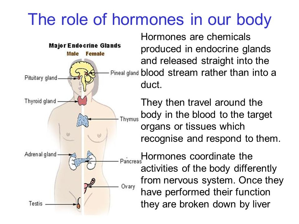 Hormones Objectives Define Hormone And State The Role Of Adrenalin