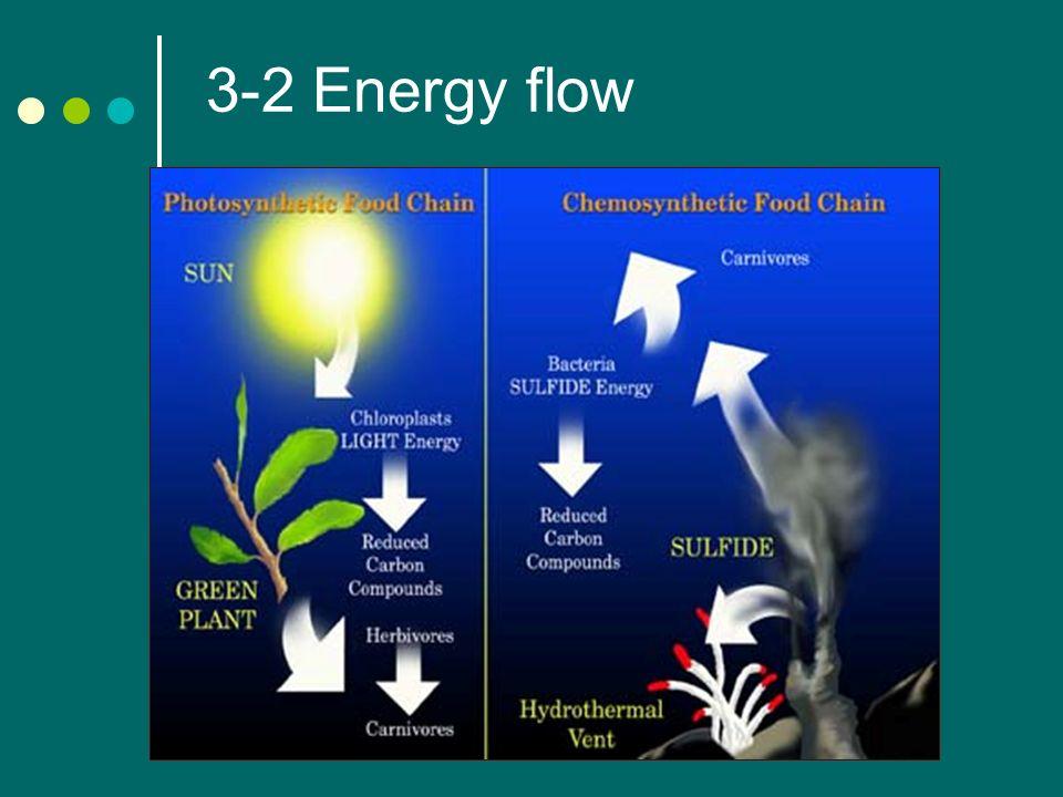1 3 2 energy flow