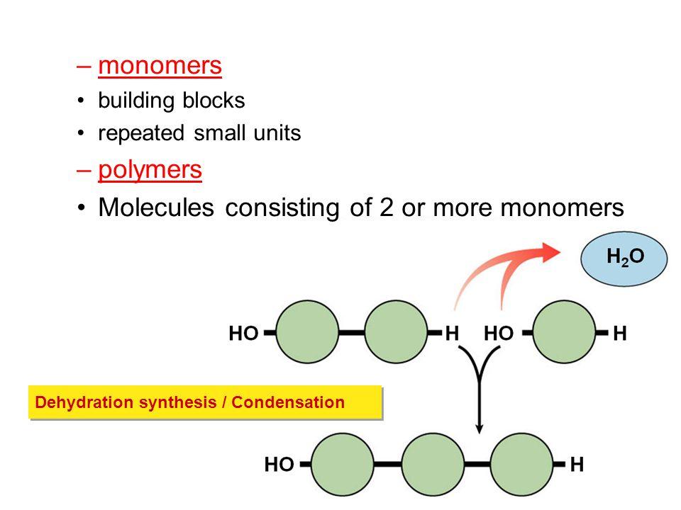Macromolecules 4 Major Classes Of Macromolecules Carbohydrates