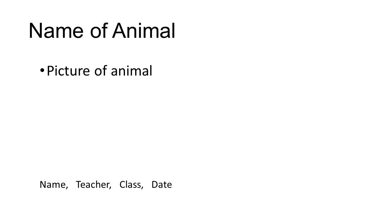 Animal Research Project Template This Is A Powerpoint Template For