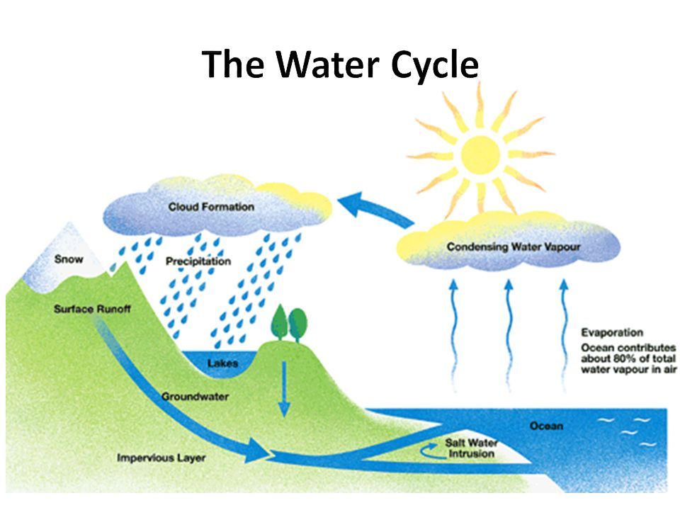 diagram of the hydrosphere wiring diagrams control Diagram of Global Temperatures the hydrosphere all the different forms of water on earth ppt ocean diagram diagram of the hydrosphere