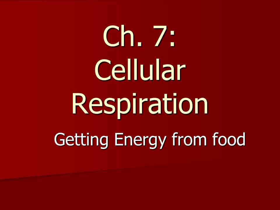Ch. 7: Cellular Respiration Getting Energy from food
