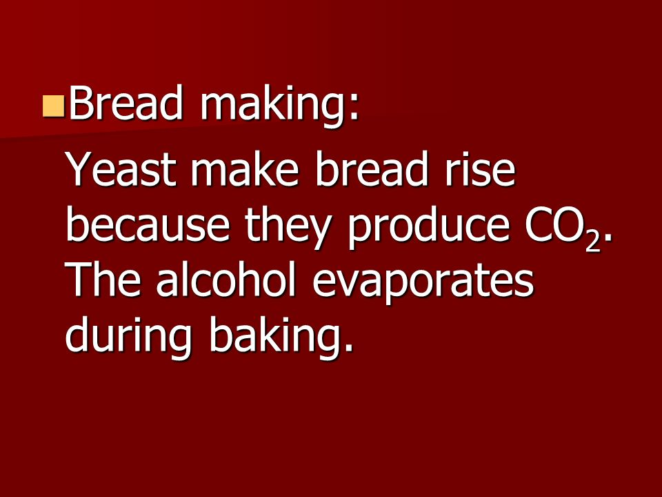 Bread making: Bread making: Yeast make bread rise because they produce CO 2.