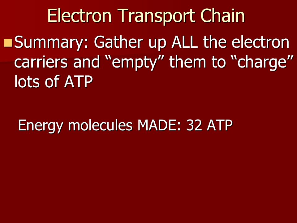 Electron Transport Chain Summary: Gather up ALL the electron carriers and empty them to charge lots of ATP Summary: Gather up ALL the electron carriers and empty them to charge lots of ATP Energy molecules MADE: 32 ATP