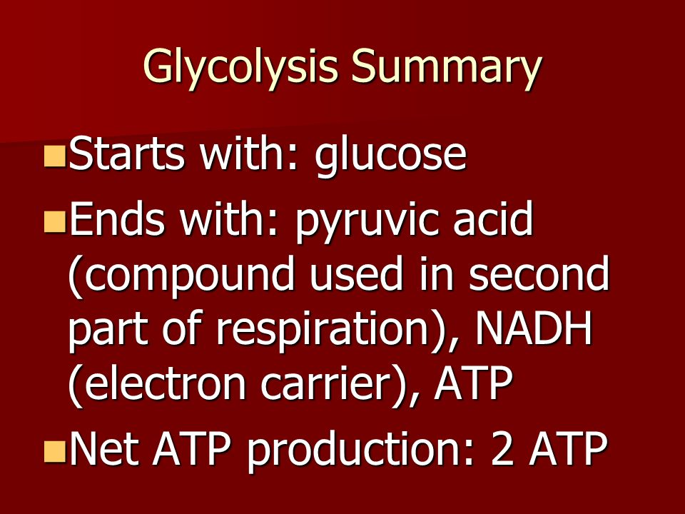 Glycolysis Summary Starts with: glucose Ends with: pyruvic acid (compound used in second part of respiration), NADH (electron carrier), ATP Net ATP production: 2 ATP