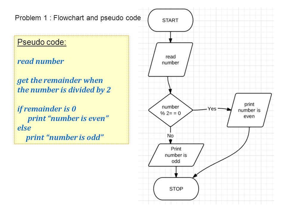 Lecture 2 Examples Pseudo code and flowcharts  Problem 1