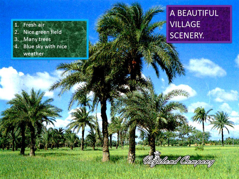 A Beautiful Village Scenery A Beautiful Village Scenery 1 Fresh