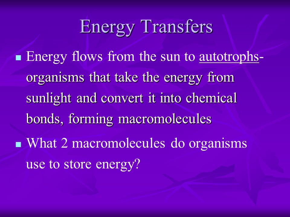 Energy Transfers organisms that take the energy from sunlight and convert it into chemical bonds, forming macromolecules Energy flows from the sun to autotrophs- organisms that take the energy from sunlight and convert it into chemical bonds, forming macromolecules What 2 macromolecules do organisms use to store energy
