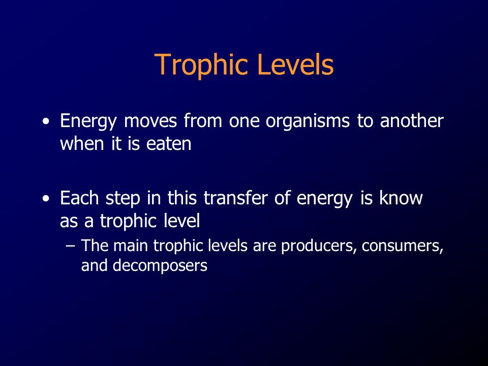 Trophic Levels Energy moves from one organisms to another when it is eaten Each step in this transfer of energy is know as a trophic level –The main trophic levels are producers, consumers, and decomposers