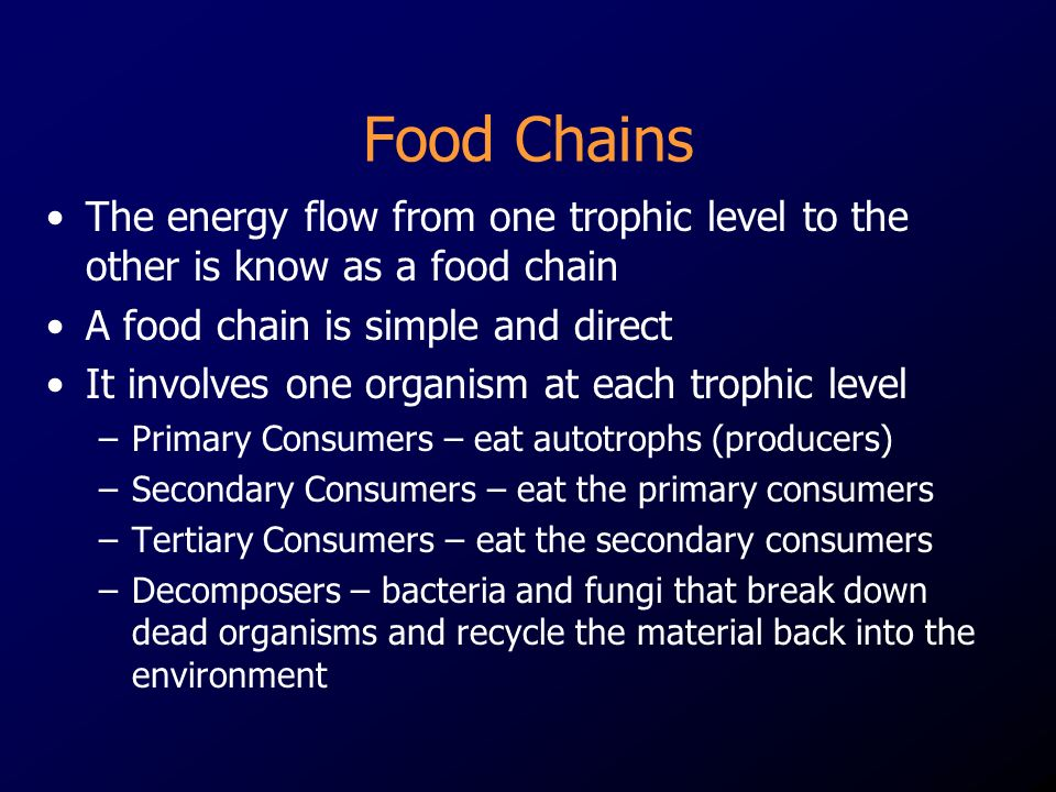 Food Chains The energy flow from one trophic level to the other is know as a food chain A food chain is simple and direct It involves one organism at each trophic level –Primary Consumers – eat autotrophs (producers) –Secondary Consumers – eat the primary consumers –Tertiary Consumers – eat the secondary consumers –Decomposers – bacteria and fungi that break down dead organisms and recycle the material back into the environment