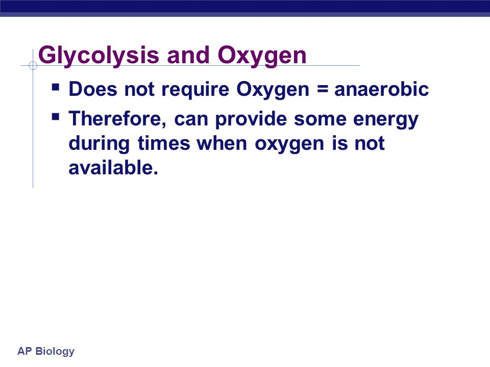 what is the net energy gain in glycolysis