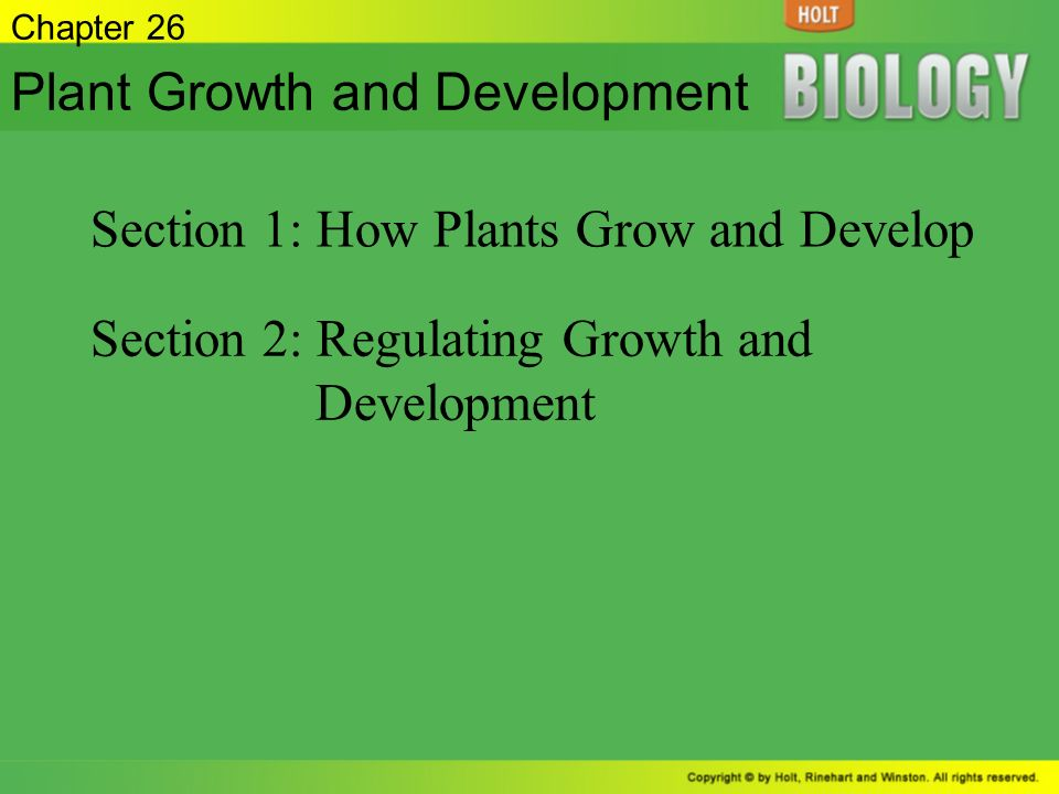 Chapter 26 Plant Growth And Development Section 1 How